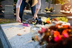 kapu-tvarkymas-Vilniuje